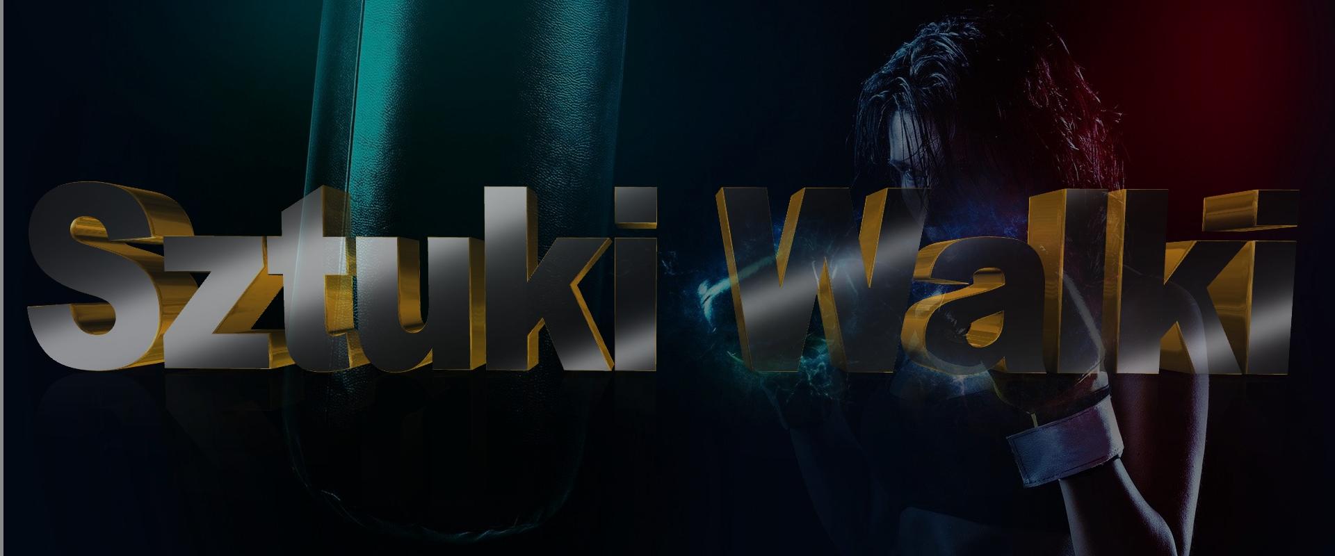 Sztuki Walki Kolbuszowa – MMA Boks Kick Boxing